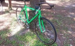 plastidip bike blaze green
